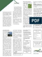 2da Edición del Periódico Sanrocano Conciencia Popular