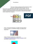 Termodinámica y Energia