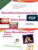 Micro Flora de La Cavidad Bucal