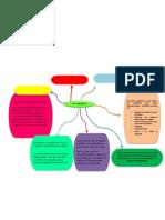 Organizador Grafico General Individual
