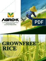 Rice Program