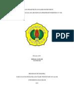 Laporan Praktikum Analisis Instrument