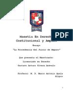 Ensayo La Procedencia del Juicio de Amparo Gustavo Arturo Olvera Arévalo