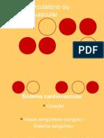 Sistema Circulatório ou Cardiovascular