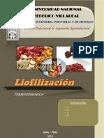 LIOFILIZACION - termodinamica