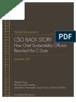 CSO Back Story
