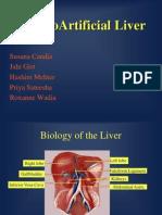 The Bio Artificial Liver2