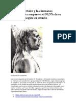 Los Neandertales y Los Humanos Modernos Comparten El 99