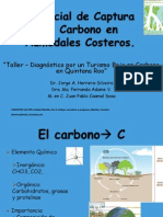 17. MT 4. CINVESTAV Captura de Carbono en Humedales Costeros