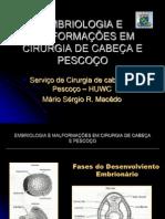 EMBRIOLOGIA E MALFORMAÇÕES
