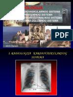 Radiologija Saponjski
