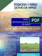 ARROZ-TEMA 1