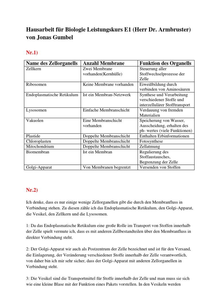 Atemberaubend Anatomie Und Physiologie Zellstruktur Und Funktion ...