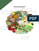 Roda Dos Alimentos e Sist.digestivo-legenda