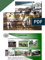 Costos de Produccion de Leche de La Cuenca Lechera de Lima