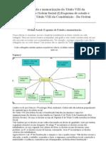 Esquema de estudo e memorização do Título VIII da Constituição - Da Ordem Social (I)