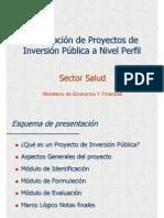 Formulación de Proyectos de Inversión Pública a Nivel de Perfil - Salud