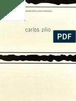 projMB_Zilio_C