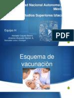 esquema vacunacion