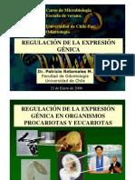 regulacion_expresion_genica
