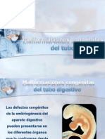 Malformaciones Congenitas Del Tubo Digestivo