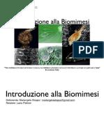 Introduzione alla Biomimesi