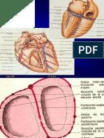 Cardiopathie ischémique Généralités 2006 ppt - 54P