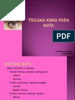 Trauma Kimia Pada Mata