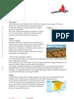 Ficha Técnica Bierzo-Ed-062010