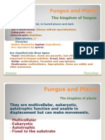 Fungus and Plants