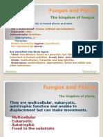 Fungus and Plants