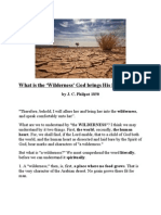 What is the 'Wilderness' God Brings His Elect Into?