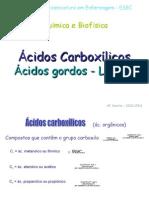 ac_gordos1