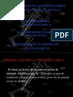 TERMODINAMICA 06