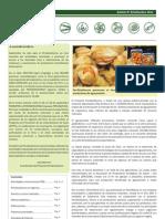 Boletín PBD N° 8