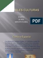 Principales culturas