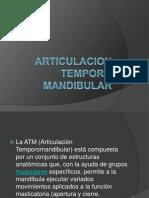 Articulacion Temporo Mandibular.ppt2[1]