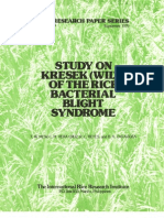 IRPS 39 Study on Kresek (Wilt) of the Rice Bacterial Blight Syndrome