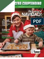 voceronavidad2010_0