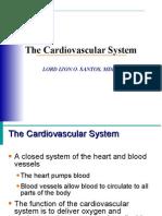 Cardiovascular Sys1
