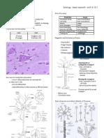 Lec5 - Nervous Tissue