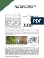 Status Rumput Laut Indonesia, Peluang Dan Tantangan[1]