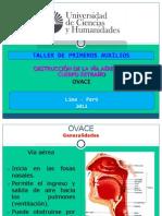 2011-II_CLASE_SEM._5_OVACE