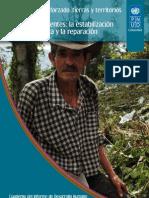 Desplazamiento forzado - Cuaderno del Informe de Desarrollo Humano Colombia 2011