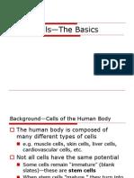 Stem Cell_the Basics