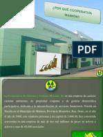 Propuesta Para Las Minas1