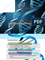 426bDNA