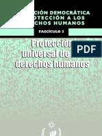 Protección Universal de Los Derechos Humanos
