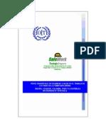 PPPerfil Diagnostico en Seguridad Region Andina