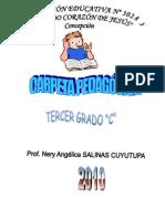 CARPETA PEDAG.